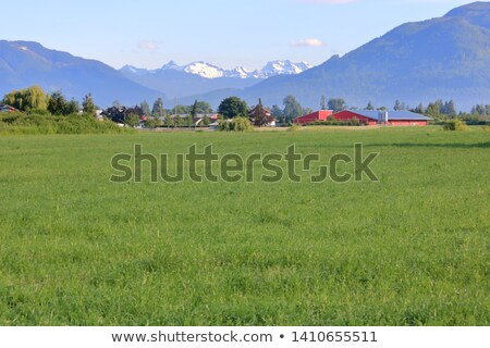 Agricultural land overlooking snow capped mountain range Stock photo © avdveen