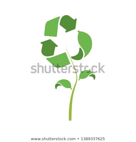Ikon levél fa szemét kreatív szöveg Stock fotó © rioillustrator