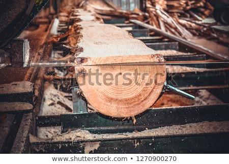 Fűrészmalom köteg fa malom zöld ipar Stock fotó © photosil
