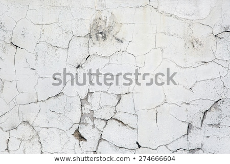 Old Cracked Wall Stock photo © SRNR