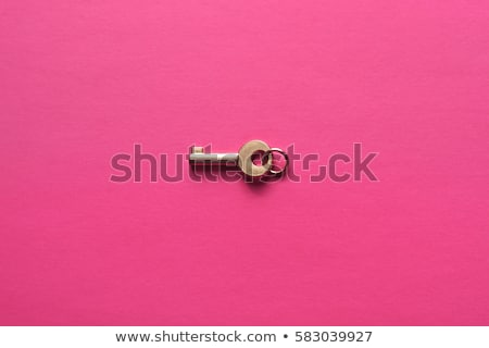 Pasztell zárolt kulcs Stock fotó © sundaemorning