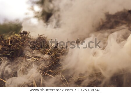 Photo of the dense brown dust Stock photo © konradbak