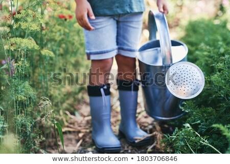 çocuk sulama örnek bebek çim doğa Stok fotoğraf © adrenalina