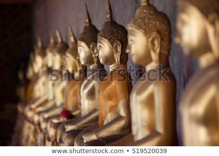 Row of Buddha statues Stock photo © romitasromala