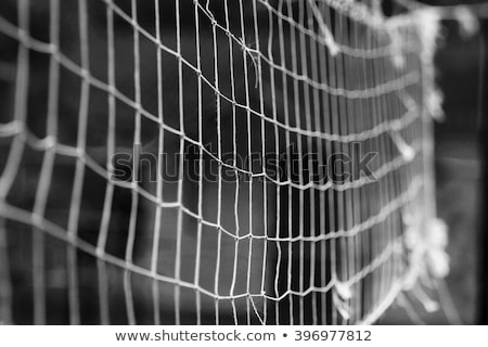 volleyball net on a background blue sky stock photo © master1305
