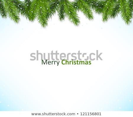 Christmas green framework isolated on white background Stock photo © Valeriy