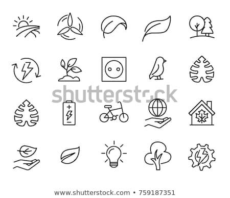 Globe Sign Green Vector Icon Design Stock photo © rizwanali3d