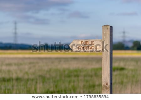 Pedestrian path on wooden poles Stock photo © Fotografiche