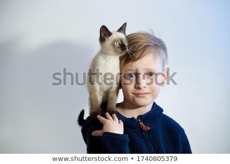 портрет · кошки · саду · Cute · глазах - Сток-фото © meinzahn