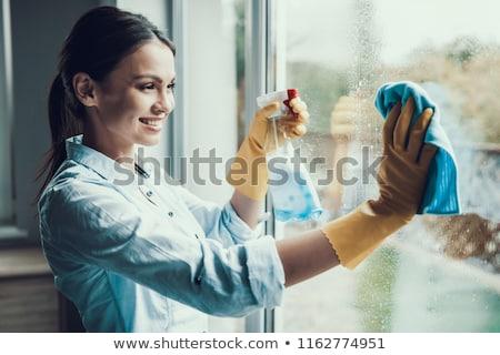Stockfoto: Vrouw · Windows · illustratie · meisje · schoonmaken · schone