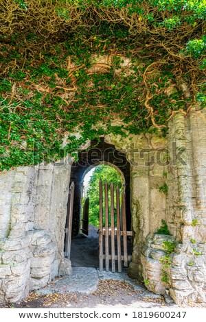 Bejárat viharvert fal fedett borostyán toszkán Stock fotó © Digifoodstock