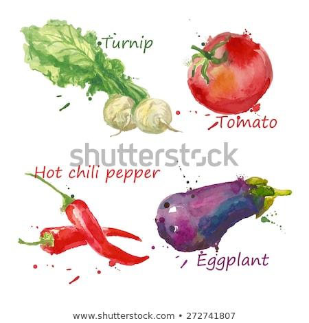 Set of vegetables with paint splashes. Stock photo © Sonya_illustrations