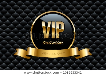 Vector text VIP Stock photo © odina222
