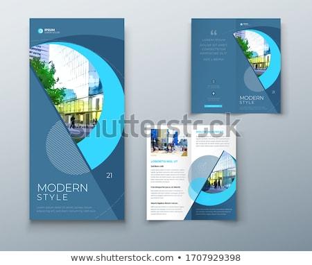 Elegante folheto modelo projeto cobrir página Foto stock © SArts