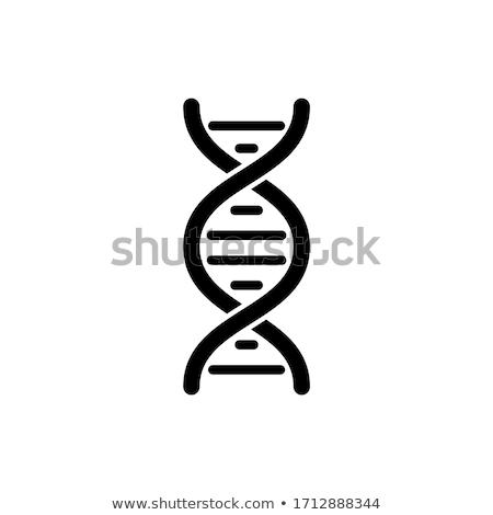 vetor · abstrato · átomo · assinar · ícone · ciência - foto stock © smoki