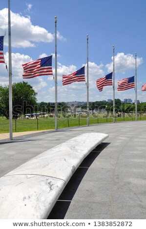 Row American Flags Half Mast Washington DC USA Stock photo © Qingwa