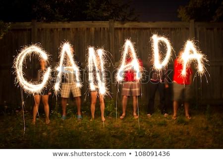 levél · vonal · Kanada · nap · kártya · vektor - stock fotó © olena