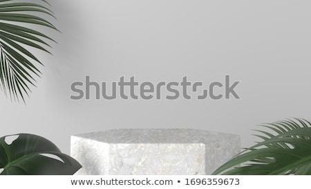 Biały 3D podium prezentacji szablon moda Zdjęcia stock © SArts