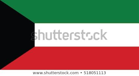 Kuwait flag, vector illustration Stock photo © butenkow