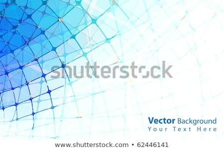 Geometric background with a grid and a distortion in the form of Stock photo © m_pavlov