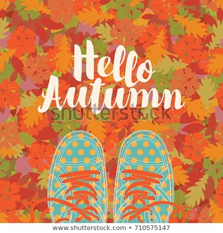 Felirat hello természet ősz dísz kézzel rajzolt Stock fotó © MarySan