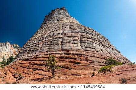 Checkerboard Mesa at Zion national park Stock photo © vichie81