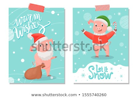 Let it Snow and Warm Wishes Postcards, Pig Animal Stock photo © robuart