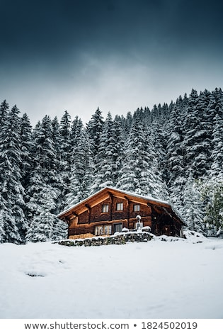 traditional houses from suiss alps stock photo © boggy