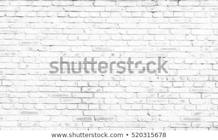 festett · téglafal · fehér · folt · fal · otthon - stock fotó © biv