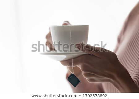 white porcelain breakfast cup in the room stock photo © make