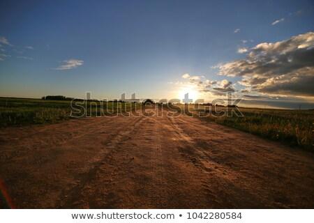 4 · 公園 · 道路 · 実例 · 草 · 風景 - ストックフォト © colematt