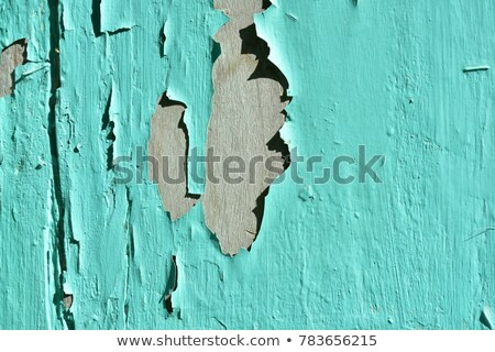 Weathered Wood Panel Wall and Window With Peeling Paint Textured Stock photo © feverpitch