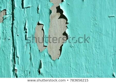 Wyblakły drewna płyta ściany okno farby Zdjęcia stock © feverpitch