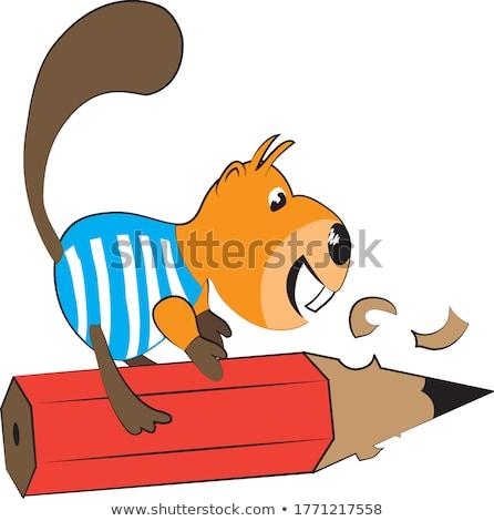 cartoon beaver holding a pencil stock photo © bennerdesign