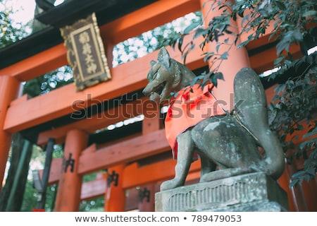 tilki · kyoto · Japonya · orman · kırmızı - stok fotoğraf © daboost