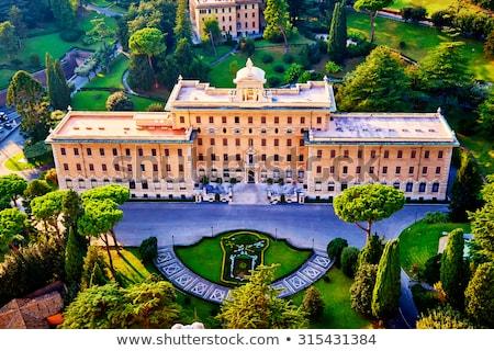 Saray Vatikan görmek kubbe Aziz Petrus Bazilikası ağaç Stok fotoğraf © borisb17