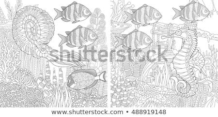 cartoon marine animal characters coloring book page Stock photo © izakowski