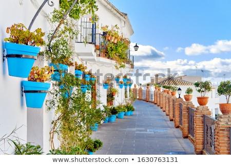 идиллический декораций пусто живописный улице небольшой Сток-фото © amok