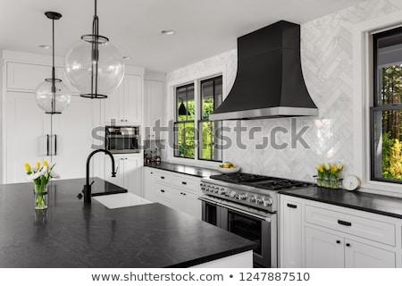 Zwarte kwarts kraan geïsoleerd witte Stockfoto © magraphics
