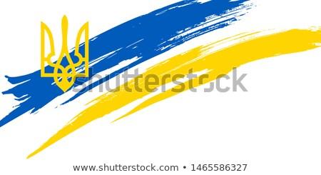 Grunge borstel Oekraïne vlag witte geïsoleerd Stockfoto © evgeny89