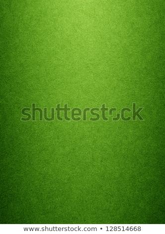 Mottled green background Stock photo © Balefire9