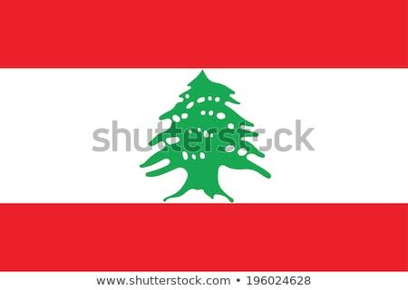 Vlag Libanon wind textuur achtergrond witte Stockfoto © cla78