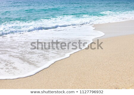 Coastal Lagoon on a Summer Day stock photo © wildnerdpix