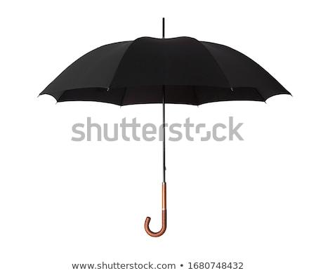 Fekete esernyő fehér biztonság segítség ősz Stock fotó © ozaiachin