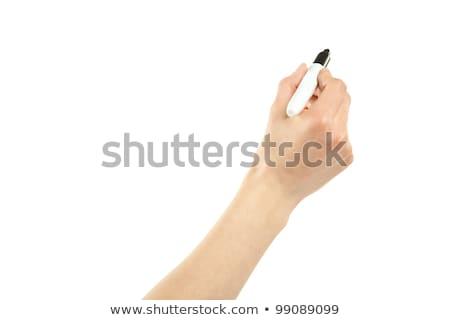 Jelző toll közelkép izolált fehér papír Stock fotó © grasycho