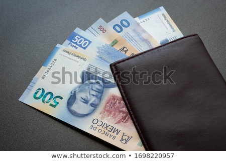 Wallet with Mexican Currency Stock photo © javiercorrea15