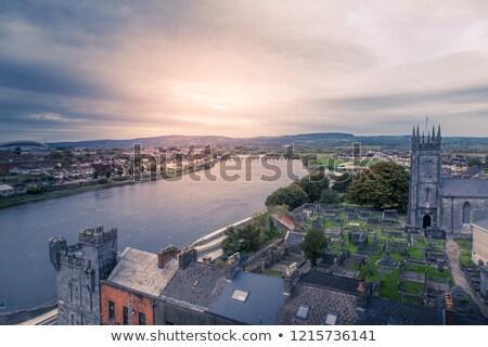 irlandais · château · célèbre · pierre · arbre · bâtiment - photo stock © mady70