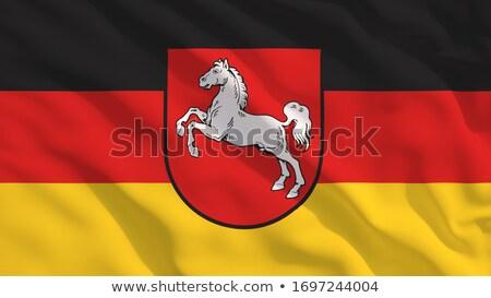 saxony flag Stock photo © tony4urban