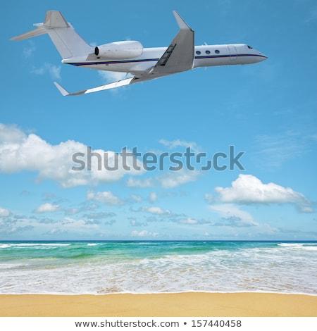 Vip vacanze spiaggia natura mare foglia Foto d'archivio © moses