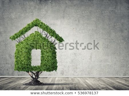 eco friendly house   real estate symbol stock photo © djdarkflower
